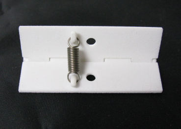 Hinge for flap